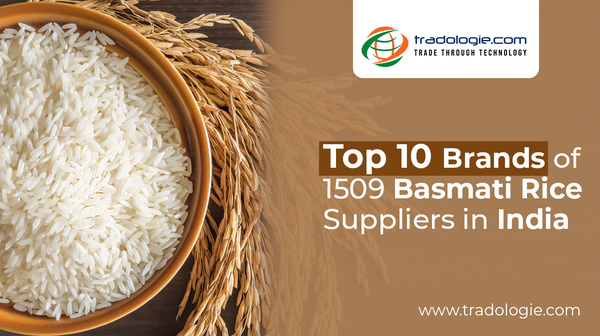Top 10 Brands of 1509 Basmati Rice Suppliers in India