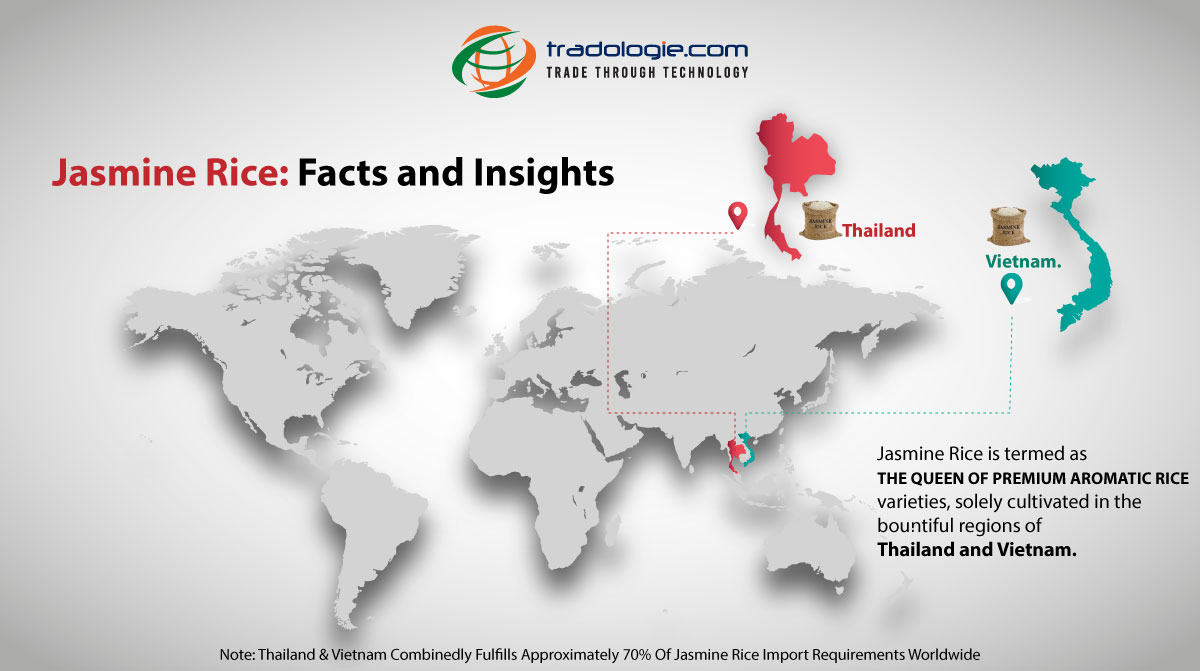 Jasmine Rice: Facts and Insights